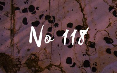 No 118 Dinosaures – Communiqué de presse